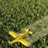 Pesticdie Regulations